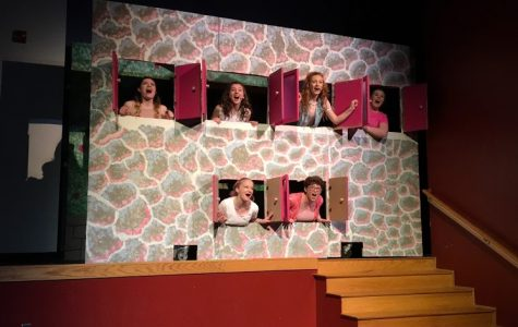 """Legally Blonde"" exceeds expectations"