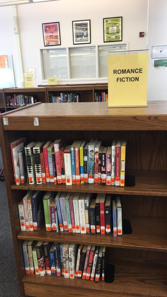 Media center organizes certain genres in a new, simpler way. Getting books has now become much easier and more efficient.