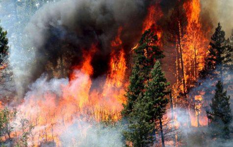 Wildfires Erupt in California