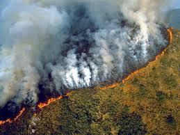 Amazon Forest Fire affects Climate Change even further