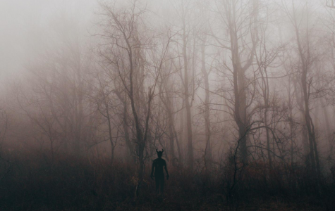 Over the years many legends have emerged from North Carolina. Some of them suggest sinister things might lurk in the woods.