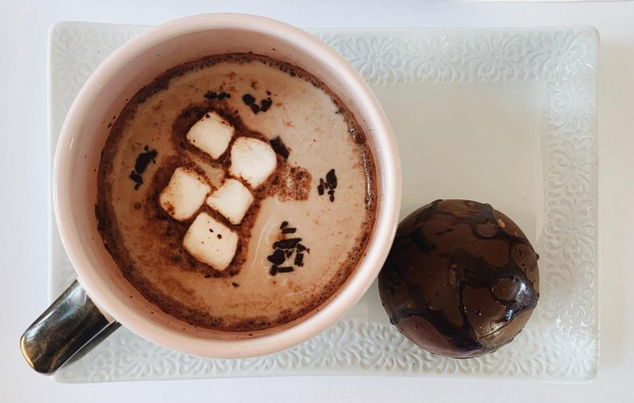 You can put marshmallows, cocoa, chocolate, or whatever else comes to mind in your hot chocolate bombs. When put in warm milk, it will melt to reveal what is inside.