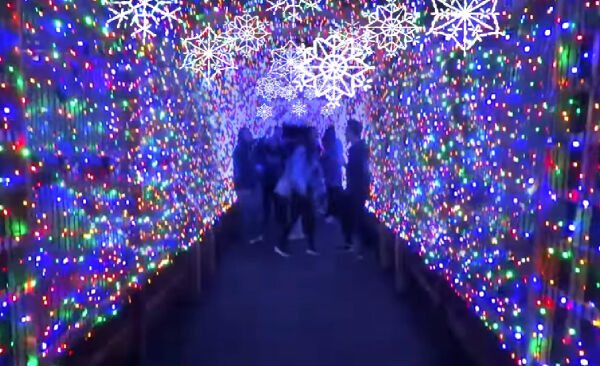 Winter Wonderlights at the Greensboro Science Center is one of many safe winter activities to do during the covid holiday season. This light display will be available until Jan. 3.