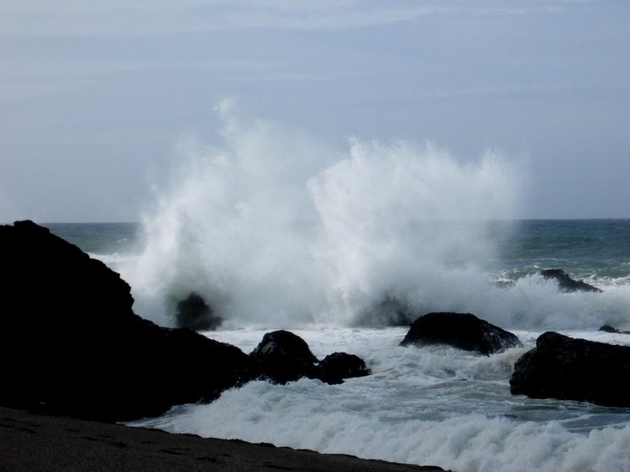"""Ocean at Bodega Bay"" by prayerfriends is licensed under CC BY-NC-ND 2.0"